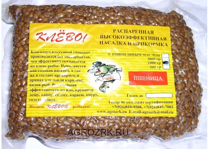 пшеница для прикормки карпа приготовить
